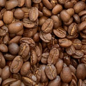 cafe-maragogype
